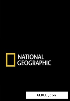 National Geographic. Битва за буйволов / National Geographic. Buffalo Warrior (2007) SATRip
