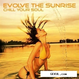 Evolve the sunrise - chill your soul (2011)